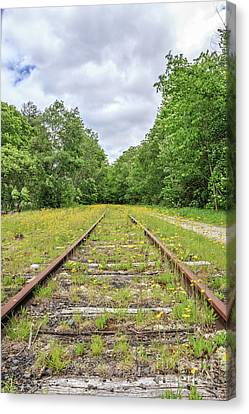 Train Tracks And Wildflowers Canvas Print by Edward Fielding