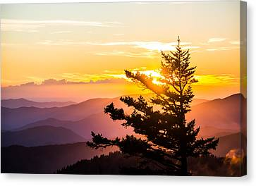 Tranquil Colors Canvas Print by Shelby Young