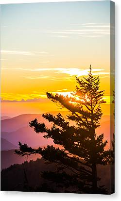Tranquil Colors Vertical Canvas Print by Shelby Young