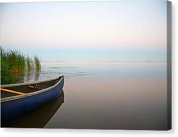 Tranquil Canvas Print by Theo Tan