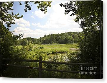 Tranquility Canvas Print by Jeannie Burleson