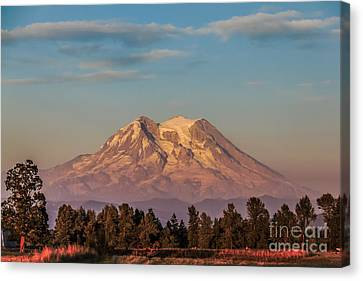 Tranquility Canvas Print by Robert Bales
