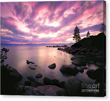 Tranquility  Canvas Print by Vance Fox