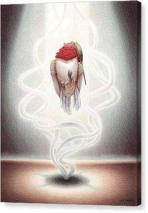 Transcendent Flight Canvas Print by Amy S Turner