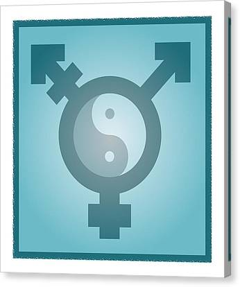 Transgender Balance, Conceptual Artwork Canvas Print by Stephen Wood