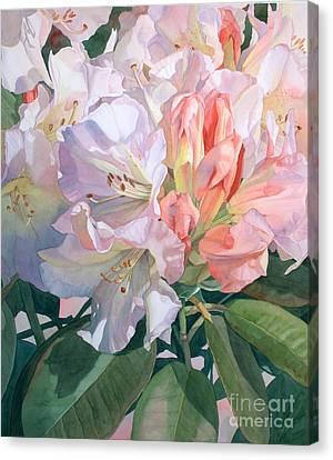 Translucence Canvas Print by Jan Lawnikanis