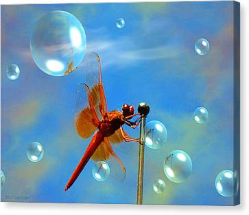Transparent Red Dragonfly Canvas Print by Joyce Dickens