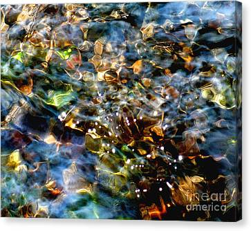 Treasures Canvas Print by Terril Heilman