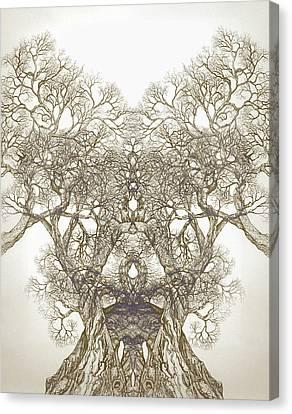 Tree 20 Hybrid 1 Canvas Print by Brian Kirchner