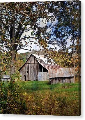 Tree And Barn Canvas Print by Marty Koch