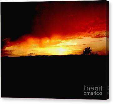 Tree At Sunset Canvas Print by Merton Allen
