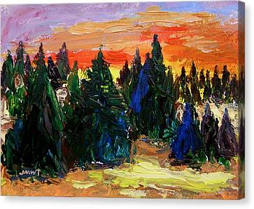 Tree Farm Sunset Canvas Print by John  Williams