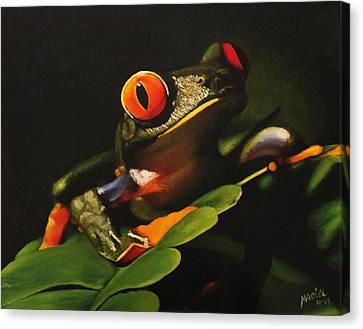 Tree Frog Canvas Print by Maciel Cantelmo