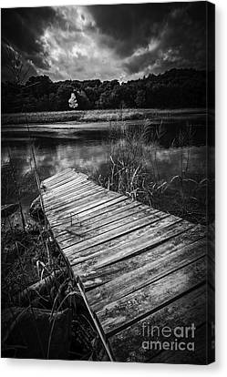 Tree Of Zen Black And White Canvas Print by Edward Fielding