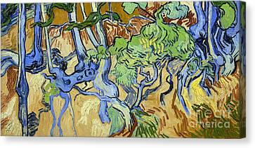 Tree Roots Canvas Print by Van Gogh