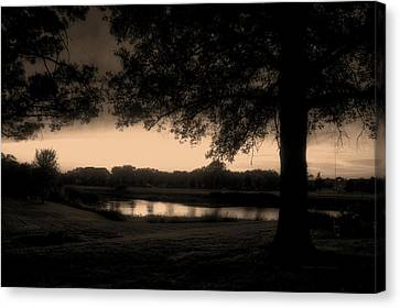 Tree Silhouette By The Pond Sepia Canvas Print by Thomas Woolworth