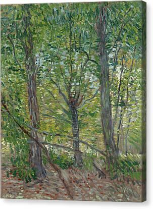 Trees Canvas Print by Vincent van Gogh