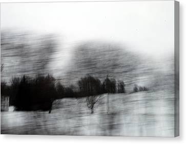 Treescape 2 Canvas Print by David Hickey