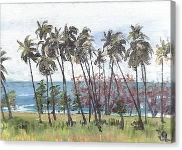 Tres Palmas Canvas Print by Sarah Lynch