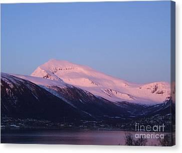 Tromsdalstinden In Pink Canvas Print by Sverre Andreas Fekjan