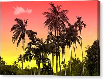 Tropical 9 Canvas Print by Mark Ashkenazi