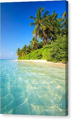 Tropical Beach - Maldives Canvas Print by Matteo Colombo