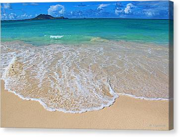 Tropical Hawaiian Shore Canvas Print by Kerri Ligatich