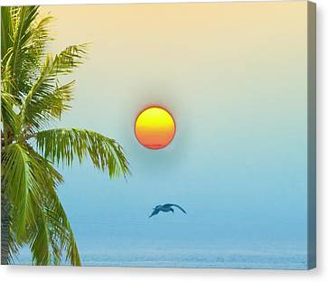 Tropical Sun Canvas Print by Bill Cannon
