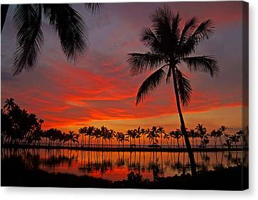 Tropical Sunset Reflections Canvas Print by Jennifer Crites