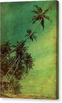 Tropical Vestige Canvas Print by Andrew Paranavitana