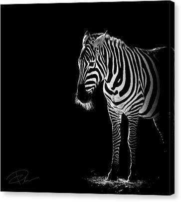 Troy Canvas Print by Paul Neville