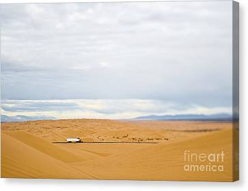Truck Driving Through Desert Canvas Print by Eddy Joaquim