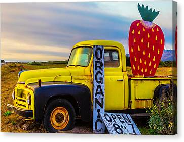 Truck With Strawberry Sign Canvas Print by Garry Gay