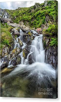 Tryfan Mountain Rapids Canvas Print by Adrian Evans