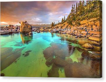 Trying To Forget Canvas Print by Steve Baranek