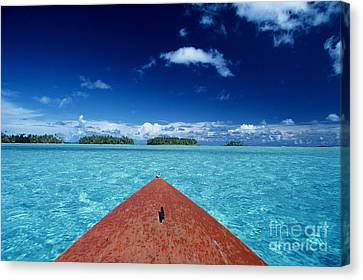 Tuamotu Islands, Raiatea Canvas Print by William Waterfall - Printscapes