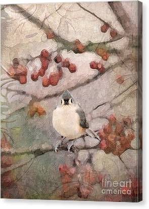 Tufted Titmouse Canvas Print by Betty LaRue