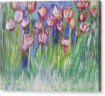 Tulip Bed Canvas Print by Don  Wright