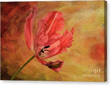 Tulip In Flames Canvas Print by Lois Bryan