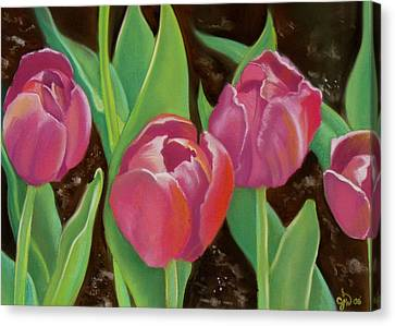 Tulips Canvas Print by Candice Wright