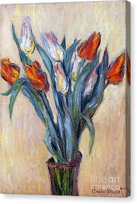 Tulips Canvas Print by Claude Monet