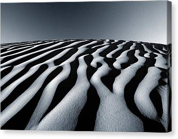 Tunisian Dunes Canvas Print by Tim Booth