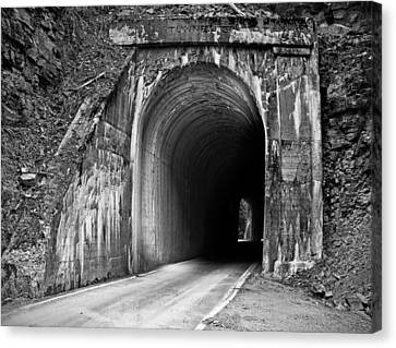 Tunnel Canvas Print by Leland D Howard