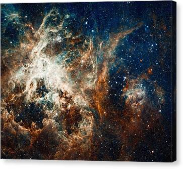 Turbulent Star-making Region Canvas Print by Marco Oliveira