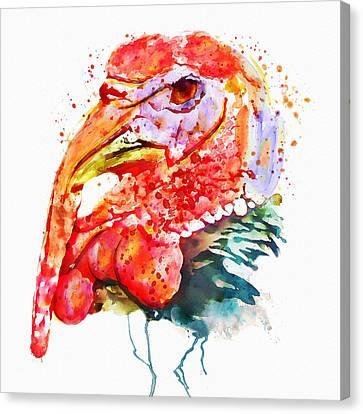 Turkey Head Canvas Print by Marian Voicu