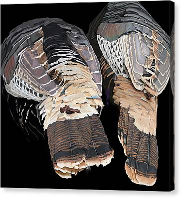 Turkey Tails Closeup Canvas Print by Pam Little