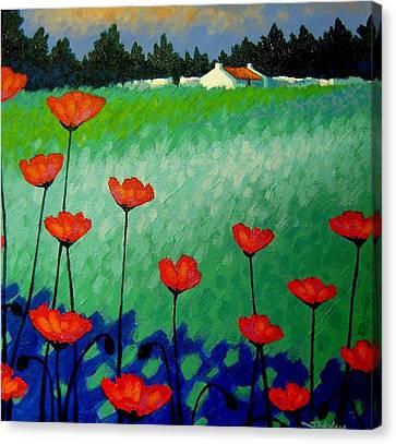 Turquoise Meadow Canvas Print by John  Nolan
