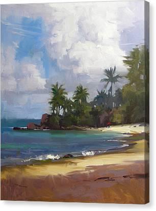 Turtle Beach Canvas Print by Richard Robinson