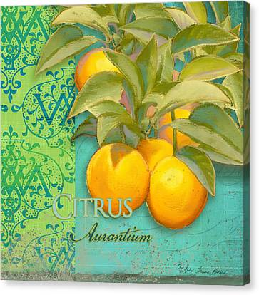 Tuscan Orange Tree - Citrus Aurantium Damask Canvas Print by Audrey Jeanne Roberts