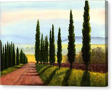 Tuscany Cypress Trees Canvas Print by Janet King